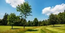 Aktuální stav hřiště na začátku prázdnin