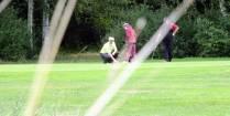 Golfista + Negolfista 2013